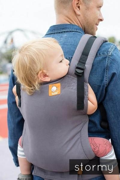 Tula Free-to-Grow Baby Carrier - Stormy